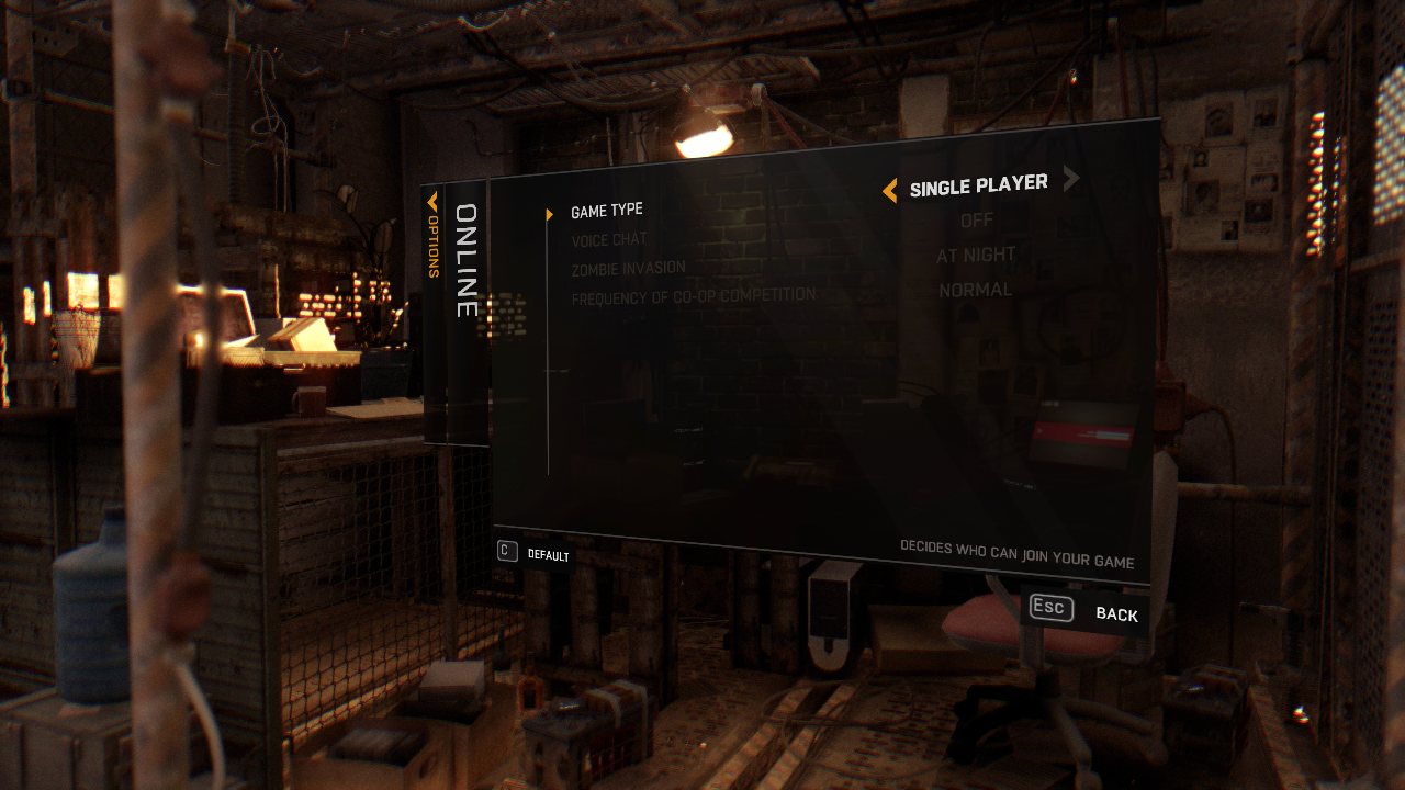 DyingLight online settings
